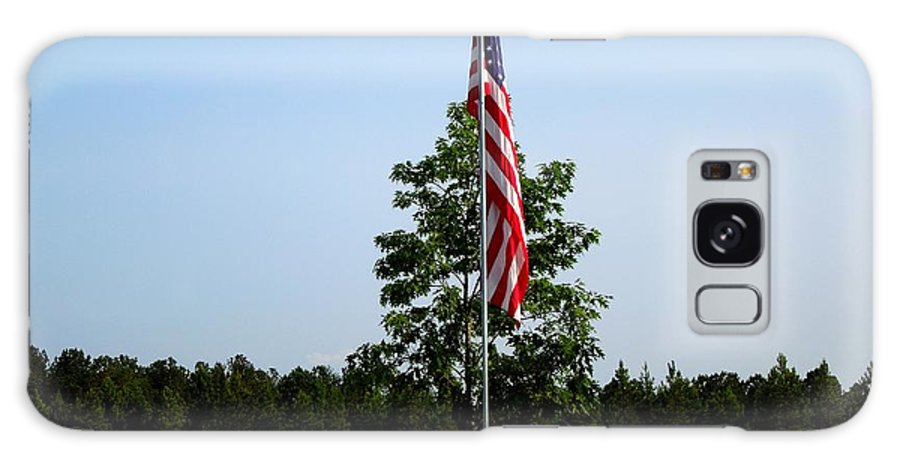 Flag Galaxy S8 Case featuring the photograph American Flag At Soldiers Graves by Renee Trenholm