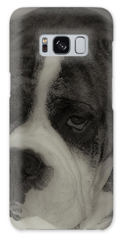 Boxer Galaxy S8 Case featuring the photograph Angelic Boxer by DigiArt Diaries by Vicky B Fuller