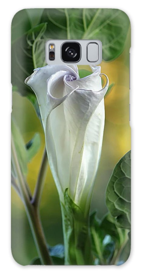 Angel Galaxy S8 Case featuring the photograph Angel's Trumpet Bud by Angie Vogel