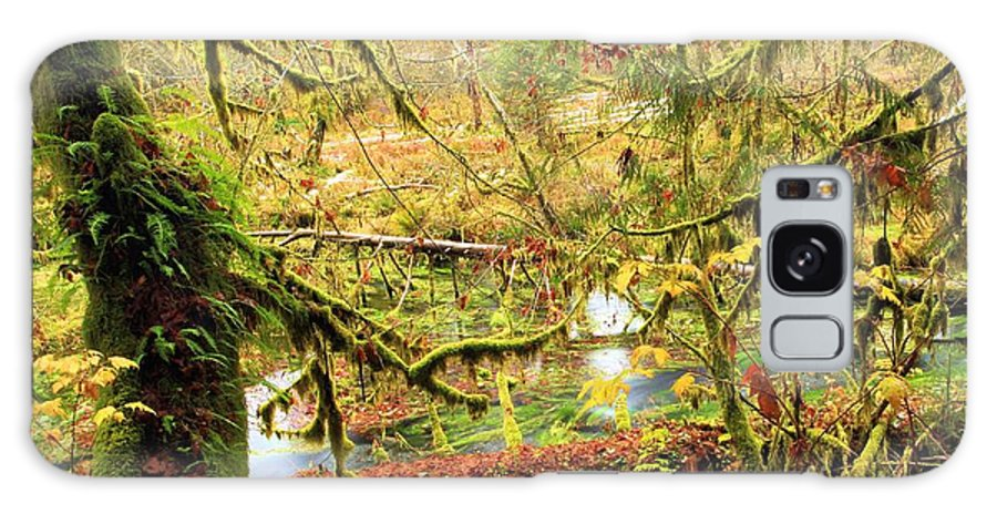Hoh Rainforest Galaxy S8 Case featuring the photograph Attack Of The Moss by Adam Jewell