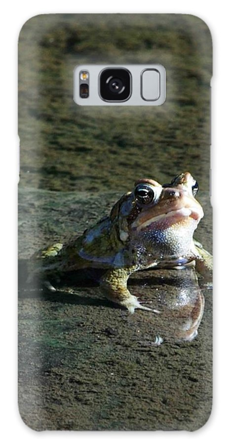 Frog Galaxy S8 Case featuring the photograph Attitude by Dennis Comins
