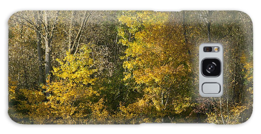 Britain Galaxy S8 Case featuring the photograph Autumn Colours by Andrew Michael