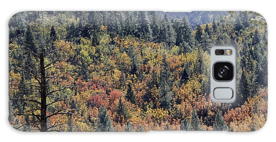 Red Galaxy S8 Case featuring the photograph Autumns Palette by Shawn Naranjo
