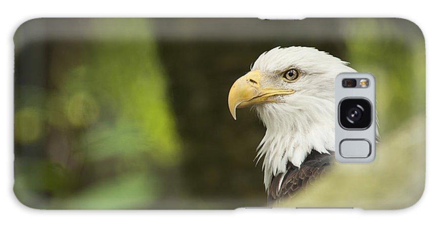 Portrait Galaxy S8 Case featuring the photograph Baldy by Joye Ardyn Durham