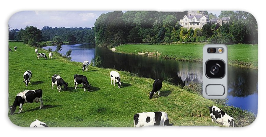 Angular Galaxy S8 Case featuring the photograph Ballyhooley, Co Cork, Ireland Friesian by The Irish Image Collection