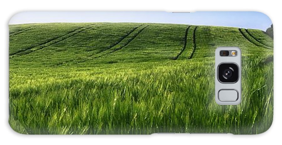 Barley Galaxy S8 Case featuring the photograph Barley, Co Down by The Irish Image Collection