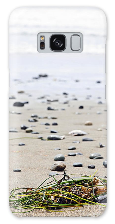 Pacific Galaxy S8 Case featuring the photograph Beach Detail On Pacific Ocean Coast Of Canada by Elena Elisseeva