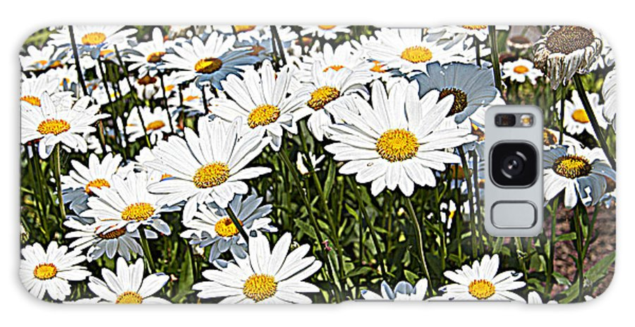 Daisies While Yellow Flowers Floral Galaxy S8 Case featuring the photograph Beautiful Daisies by Alice Gipson
