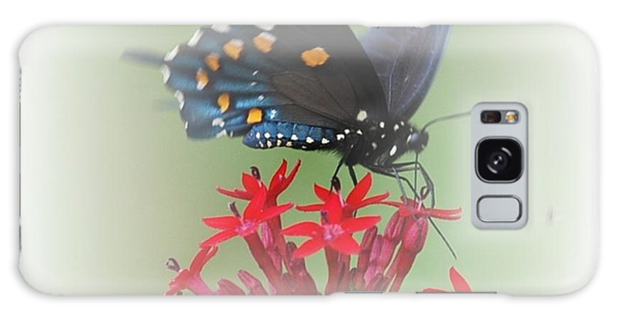 Butterflies Galaxy S8 Case featuring the photograph Beauty Flies by Judy Hall-Folde