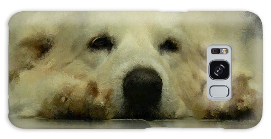 Dog Galaxy S8 Case featuring the digital art Bianca by Ericamaxine Price