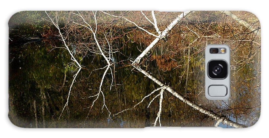 Usa Galaxy S8 Case featuring the photograph Birch Lake Reflections by LeeAnn McLaneGoetz McLaneGoetzStudioLLCcom
