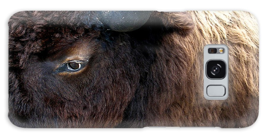 Bison Galaxy S8 Case featuring the photograph Bison Bison Up Close by Douglas Barnett