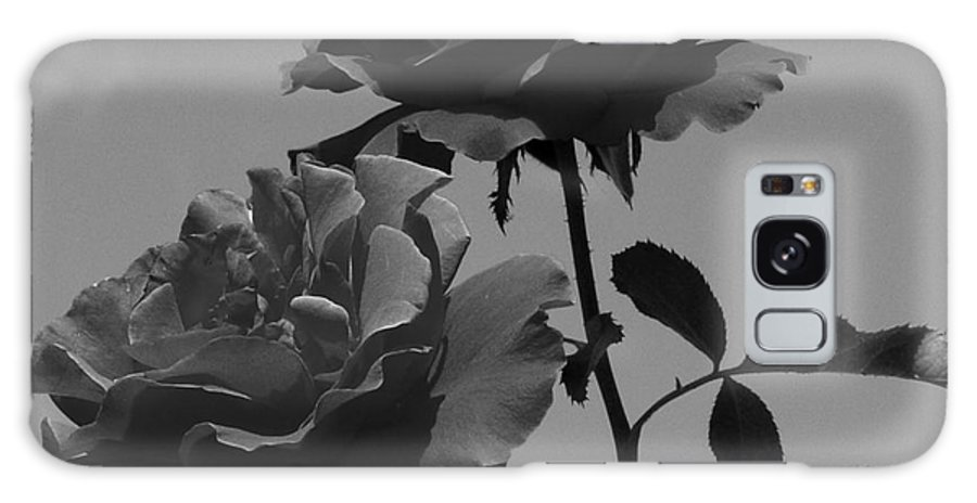 Flower Galaxy S8 Case featuring the photograph Black And White Roses by Kevin Fortier
