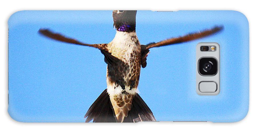 Roena King Galaxy S8 Case featuring the photograph Black-chinned Hummingbird Flying by Roena King