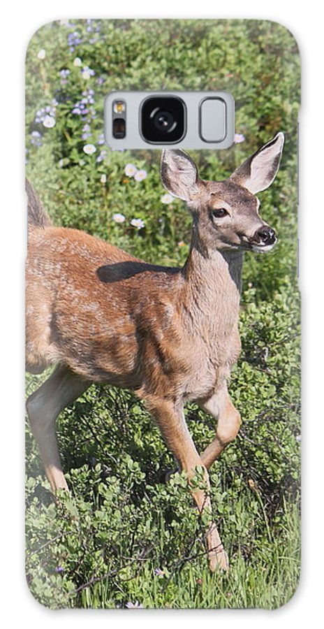 Mammal Galaxy S8 Case featuring the photograph Blacktail Fawn by Angie Vogel