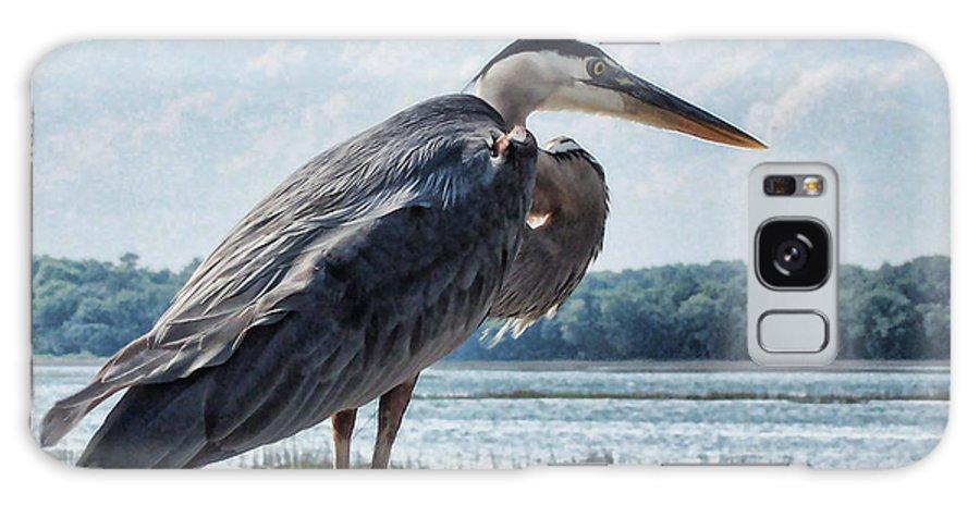 Bird Galaxy S8 Case featuring the photograph Blue Heron 1 by Susan Cliett