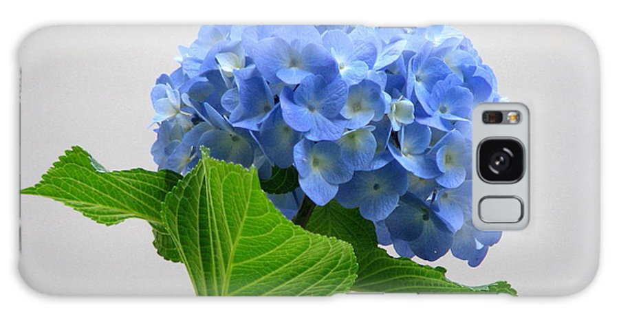 Flower Galaxy S8 Case featuring the photograph Blue Hydrangea by Angie Vogel