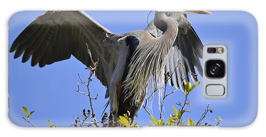 Great Blue Heron Galaxy S8 Case featuring the photograph Blue Summit by Fraida Gutovich