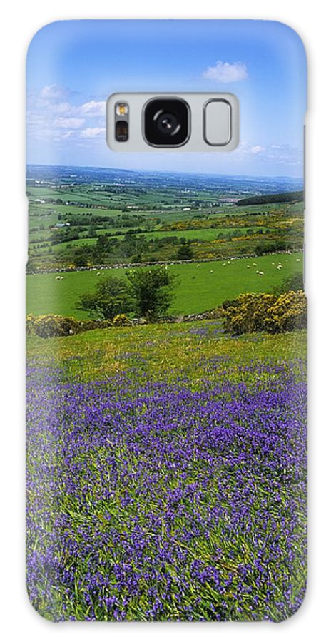 Beauty In Nature Galaxy S8 Case featuring the photograph Bluebell Flowers On A Landscape, County by The Irish Image Collection