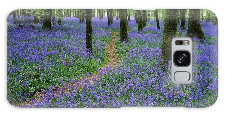 Boyle Galaxy S8 Case featuring the photograph Bluebell Wood, Near Boyle, Co by The Irish Image Collection