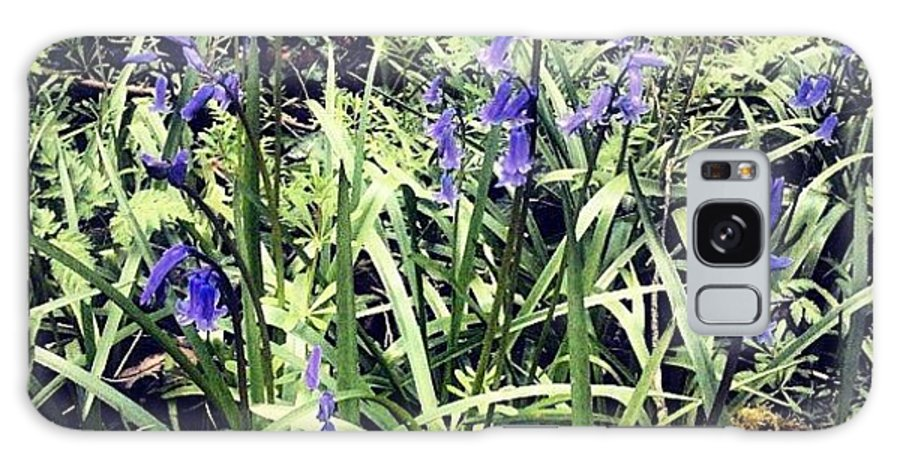 Bluebells Galaxy Case featuring the photograph Bluebells by Nic Squirrell