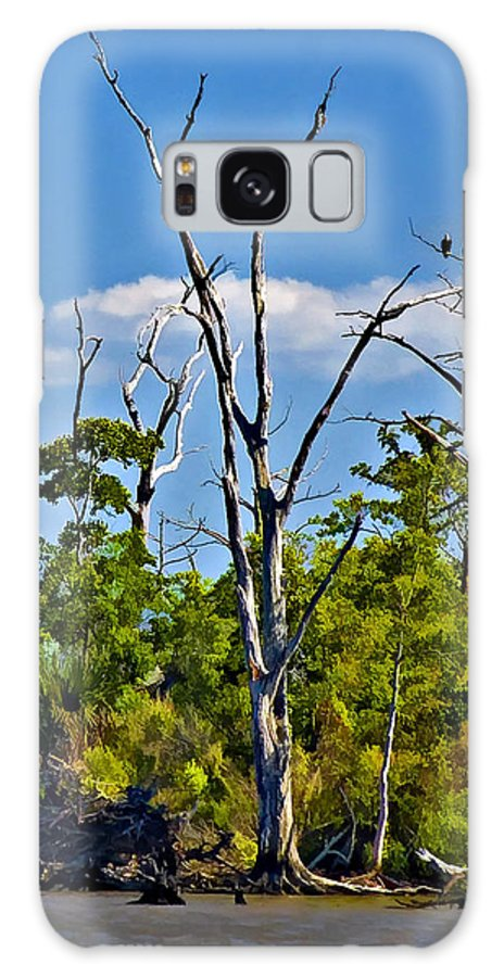Landscape Galaxy S8 Case featuring the photograph Born On The Bayou by Steve Harrington