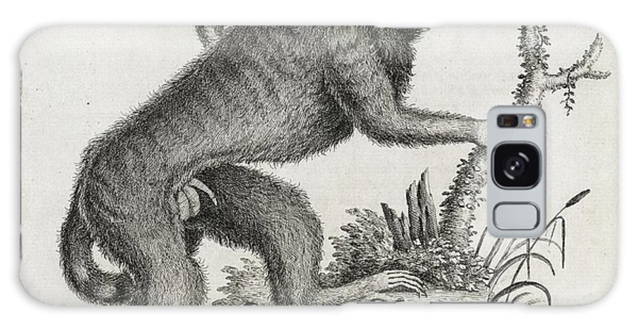 Animal Galaxy S8 Case featuring the photograph Brazilian Marmoset, 18th Century by Middle Temple Library