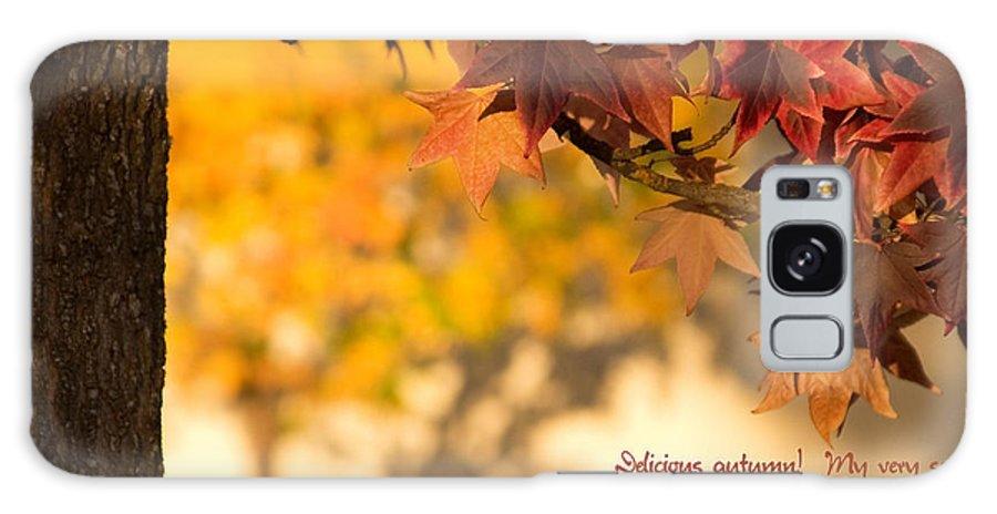 Brilliant Galaxy S8 Case featuring the photograph Brilliant Autumn Color by Mick Anderson