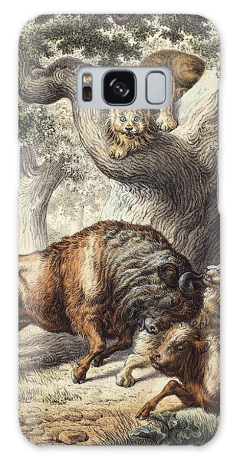 19th Century Galaxy S8 Case featuring the photograph Buffalo & Lynx by Granger