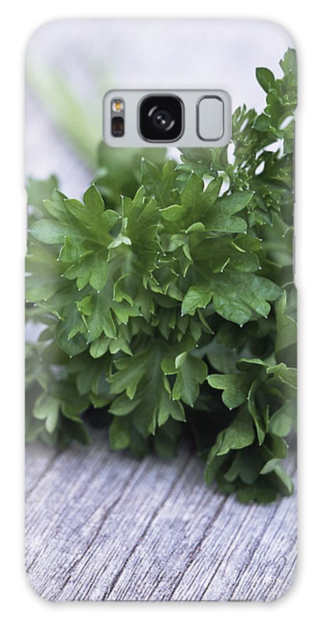 Petroselinum Crispum Galaxy S8 Case featuring the photograph Bunch Of Parsley by Maxine Adcock