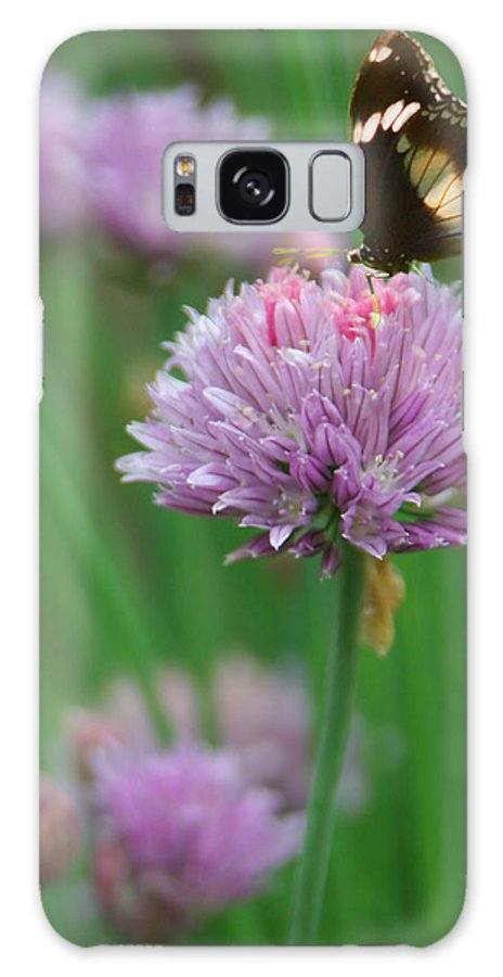 Butterfly Galaxy S8 Case featuring the photograph Butterfly On Clover by Diana Haronis