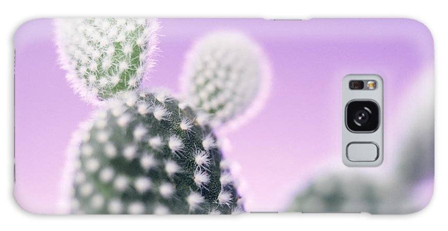 Opuntia Microdasys Galaxy S8 Case featuring the photograph Cactus Plant Spines by Lawrence Lawry