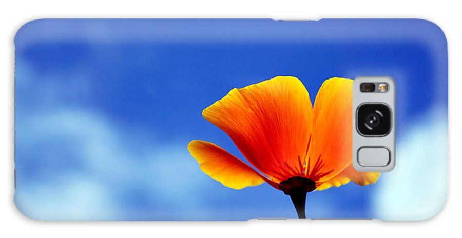 California Poppy Galaxy S8 Case featuring the photograph California Dreaming by Bel Menpes