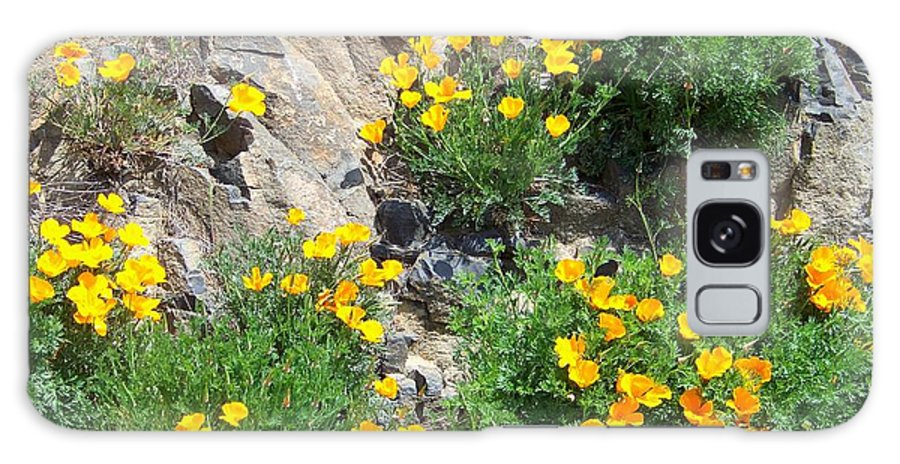 Poppy Galaxy S8 Case featuring the photograph California Poppies by Charles Robinson