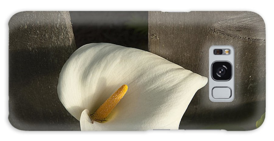 Sandra Bronstein Galaxy S8 Case featuring the photograph Calla Lily And Fence by Sandra Bronstein