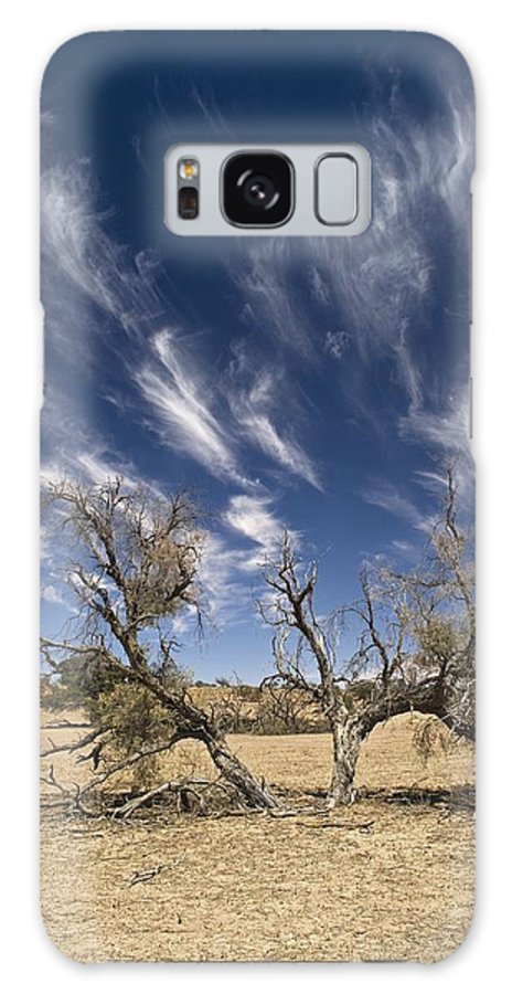 African Galaxy S8 Case featuring the photograph Camelthorn Tree (acacia Erioloba) by Tony Camacho