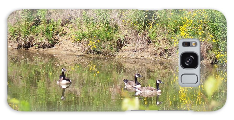 Bird Galaxy S8 Case featuring the photograph Canada Geese On Pond by Corinne Elizabeth Cowherd
