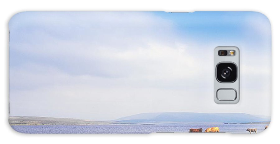Animals Galaxy S8 Case featuring the photograph Carrowmore Lake, Co Mayo, Ireland by The Irish Image Collection