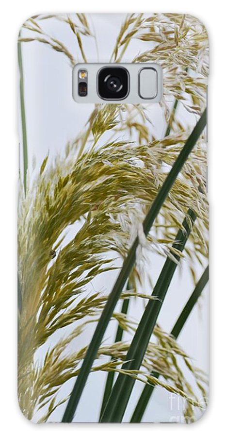 Cascading Galaxy S8 Case featuring the photograph Cascading Pampas by Maria Urso
