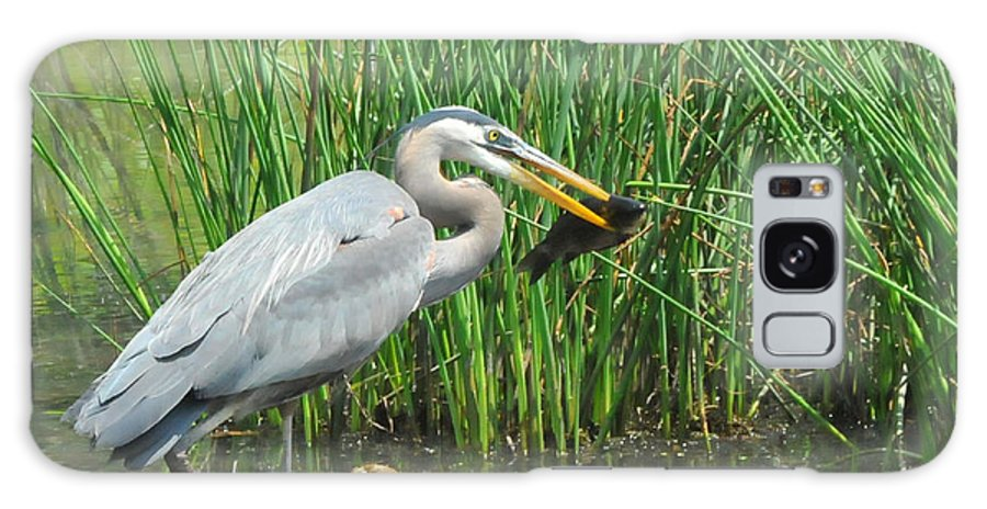 Heron Galaxy S8 Case featuring the photograph Catch Of The Day by Paul Ward
