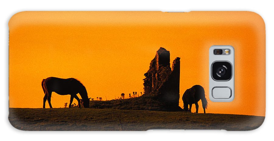 Ancient Galaxy S8 Case featuring the photograph Celtic Horses In Sunset by Carl Purcell