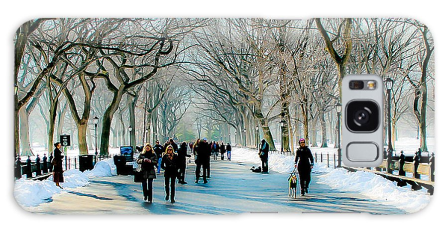 Nyc Galaxy S8 Case featuring the photograph Central Park In Winter by Ken Marsh
