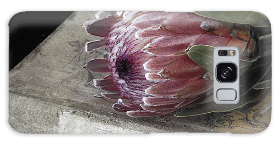Protea Galaxy S8 Case featuring the photograph Protea Still Life by Linda Dunn