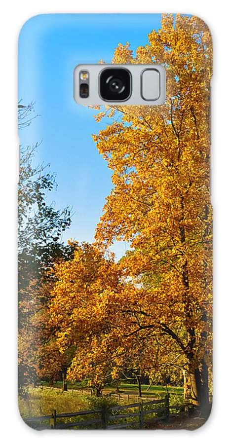 Fall Galaxy S8 Case featuring the photograph Changing Leaves by Bill Cannon