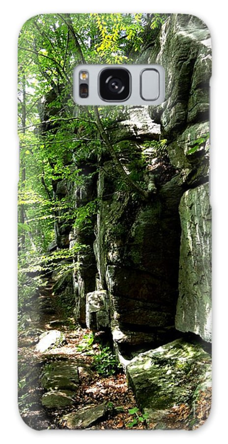 Rock Galaxy S8 Case featuring the photograph Chatfield Rock Face by Meandering Photography