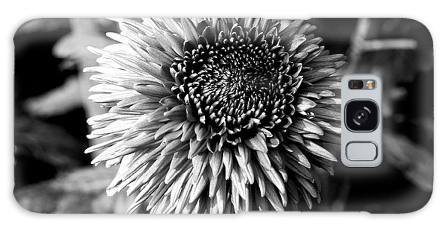 Flower Galaxy S8 Case featuring the photograph Chrysanthemum In Monochrome by Pravine Chester