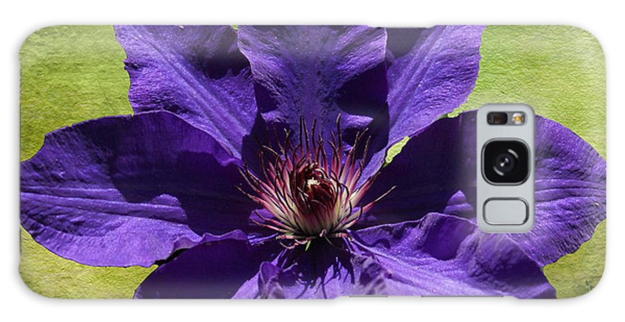 Flowers Galaxy S8 Case featuring the photograph Clematis On Stone by Rick Friedle