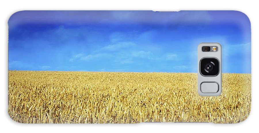 Autumn Galaxy S8 Case featuring the photograph Co Louth,irelandwheat Field by The Irish Image Collection