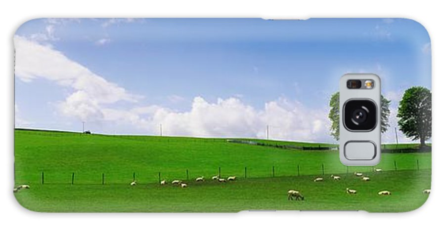 Blue Sky Galaxy S8 Case featuring the photograph Co Wicklow, Ireland Sheep by The Irish Image Collection