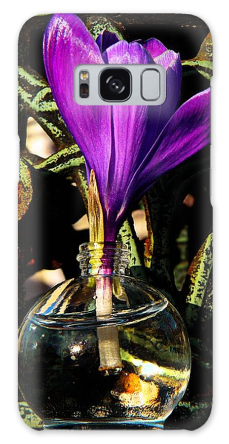 Botanical Galaxy S8 Case featuring the photograph Crocus In A Bottle by Chris Berry